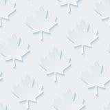 Light gray maple leaves wallpaper. Stock Photo