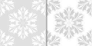 Light gray and white floral seamless ornaments Royalty Free Stock Images