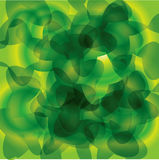 Light green background Royalty Free Stock Photography