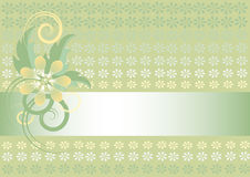 Light green background with flower. Banner.Wallpap Royalty Free Stock Photos