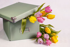 Light green box with the spring tulips on white background. Light green gift box with spring tulips on white background Stock Photos