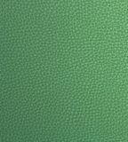 Light Green Fake Leather Stock Images