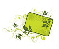 Light green floral background Royalty Free Stock Photo