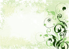 Light green floral background Royalty Free Stock Photography