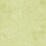 Light green grungy paint crackle background stock photography
