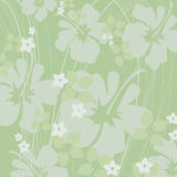 Light green hibiscus. Hibiscus prints in light greens Royalty Free Stock Photo
