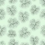 Light Green Hibiscus flower print. Gorgeous nasturtium. Floral Pattern. Trendy seamless background. Fashion Texture. Line drawing. Vector botanical vector illustration