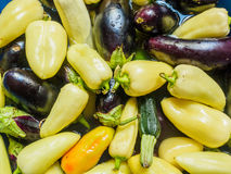 Light green pepper, green zucchini and eggplant, dark blue. Vegetables floating in the water, photographed from the top. Large group of fresh vegetables top Royalty Free Stock Photography