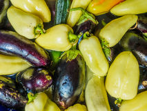 Light green pepper, green zucchini and eggplant, dark blue. Vegetables floating in the water, photographed from the top. Large group of fresh vegetables top Stock Images