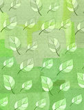 Light green texture with a pattern of leaves Royalty Free Stock Images