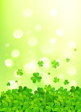 Light green vector background with clovers. And bokeh effect Stock Photography