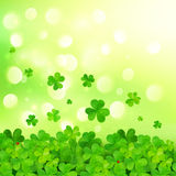 Light green vector background with clovers. And bokeh effect Royalty Free Stock Photography