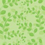 Light green vector seamless pattern Stock Photo