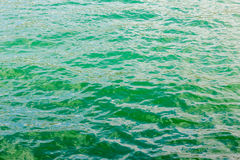 Light green water ripple background Royalty Free Stock Image