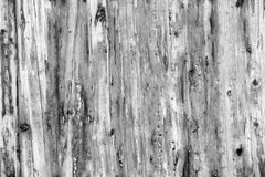 Light Grey Old Log Cabin Wall Texture. Dark Rustic House Log Wall. Horizontal Timbered Background Royalty Free Stock Images