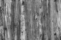 Light Grey Old Log Cabin Wall Texture. Dark Rustic House Log Wall. Horizontal Timbered Background Royalty Free Stock Photo