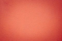 Red Snake Skin Texture With Vignette Spot Royalty Free Stock Photography