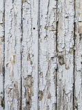 Light grey wooden background Royalty Free Stock Images