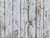 Light grey wooden background Royalty Free Stock Photography