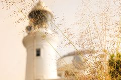 Light house Stock Images