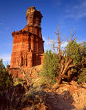 Light House Formation & Desert Plants (V). A vertical image of desert plants and the Light House formation in Texas's Palo Duro Canyon State Park Stock Photos