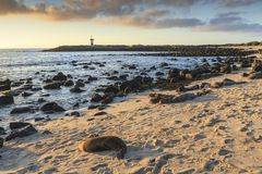 Light House in The Galapagos Islands stock images
