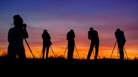 Light hunters Stock Photography
