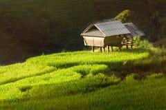 Light hut Stock Image