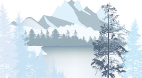 Light Landscape With Winter Forest Near Mountain Lake Stock Image