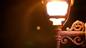 Light lantern glowing at night and gecko hiding stock footage