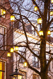 Light lanterns on a tree Royalty Free Stock Photo