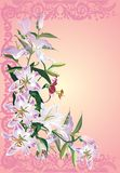 Light lily flowers on pink Stock Images