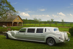 Light limousine in the meadow Royalty Free Stock Image