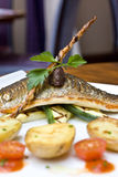Light lunch. Healthy lunch dish in modern british restaurant, with clean white crockery. sea bass with vegetables Stock Images