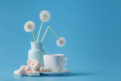 Light marshmallow sweets like dandelion Stock Photo