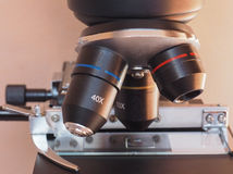 Light microscope detail Royalty Free Stock Photography
