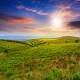 Light on mountain slope with forest at sunset Stock Image