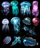 Underwater Animals Icon Set Stock Image