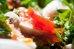 Light mushroom dish Stock Photography