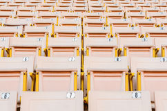 Light Orange Seat. A lot of Light Orange Seat at football stadium in the morning Royalty Free Stock Images