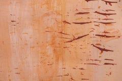 Light orange tones stock photo