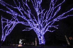 The light of pageant in Sendai Stock Photography