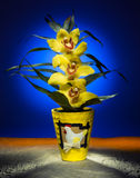 Light Painting - Easter Orchid Royalty Free Stock Photos