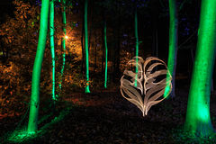 Light painting in forest stock photo