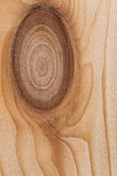 Light Pine Wood board with Knots Texture Surface Stock Image