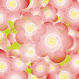 Light Pink Flower Blossoms Background Royalty Free Stock Photos