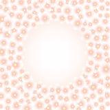 Light pink flowers frame Stock Images