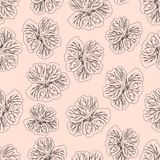Light pink Hibiscus flower print. Gorgeous nasturtium. Floral Pattern. Trendy seamless background. Fashion Texture. Line drawing. Vector botanical illustration Royalty Free Stock Photo