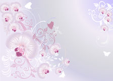 Light pink pattern with orchid flowers Stock Photography