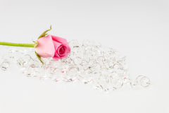 Light pink rose with crystal isolated on white background Stock Images